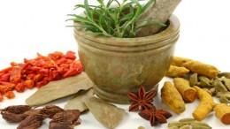 Tanaman Herbal untuk Mencegah Kanker
